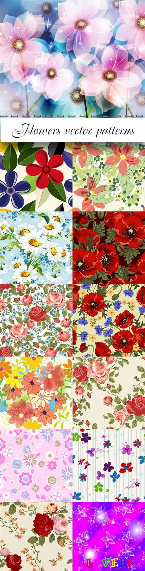 Flowers vector patterns