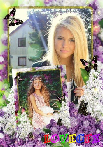 Frame for Photoshop - Salute of lilac lilac