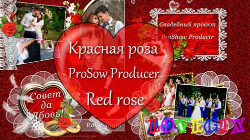 Red rose - project ProShow Producer