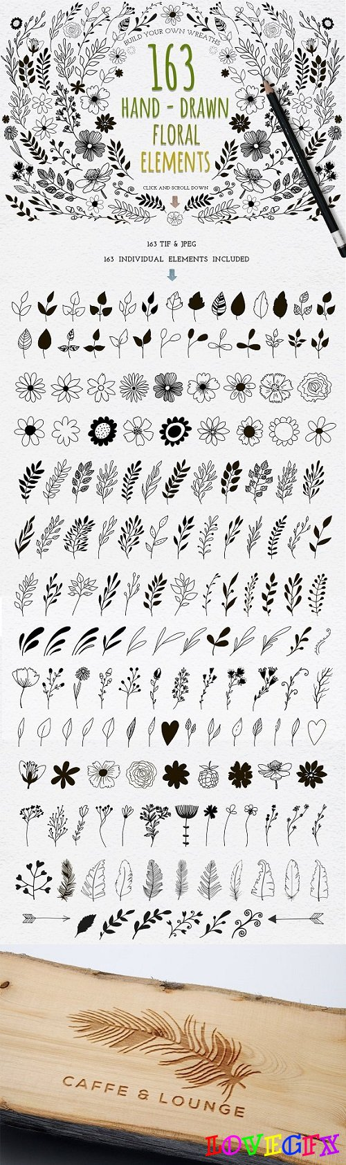 Hand Drawn floral elements 1491780