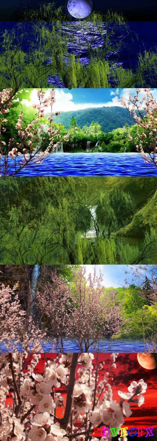 Various nature landscapes