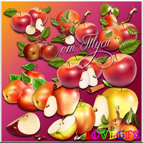 Clipart - Apples