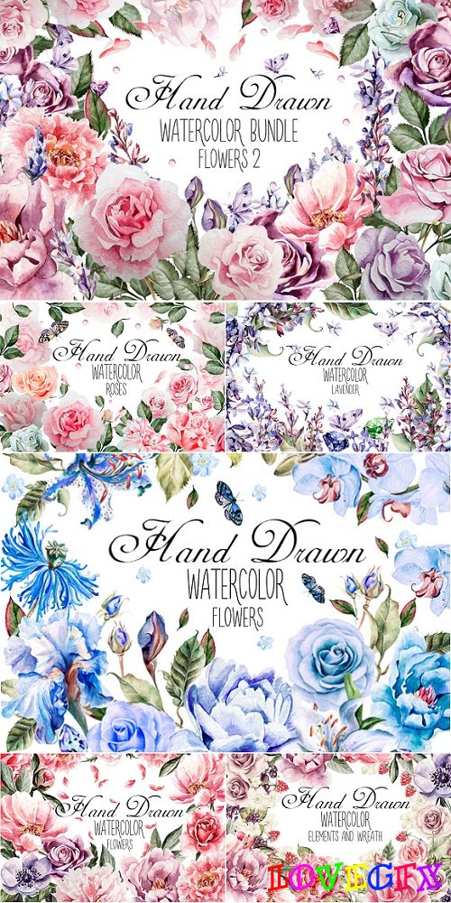HandDrawn Watercolor Bundle FLOWERS2 - 794848