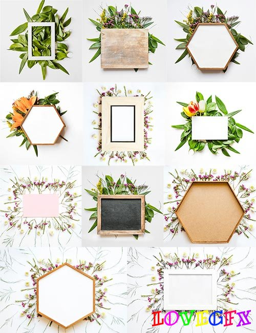 Backgrounds with flower frames