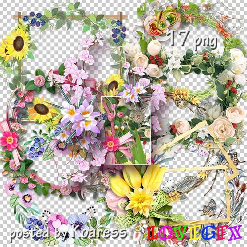 Photoframes png - Floral collection 2
