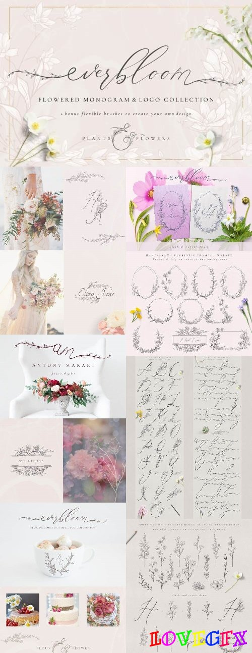 Flowered Monogram & Logo Collection - 2480124