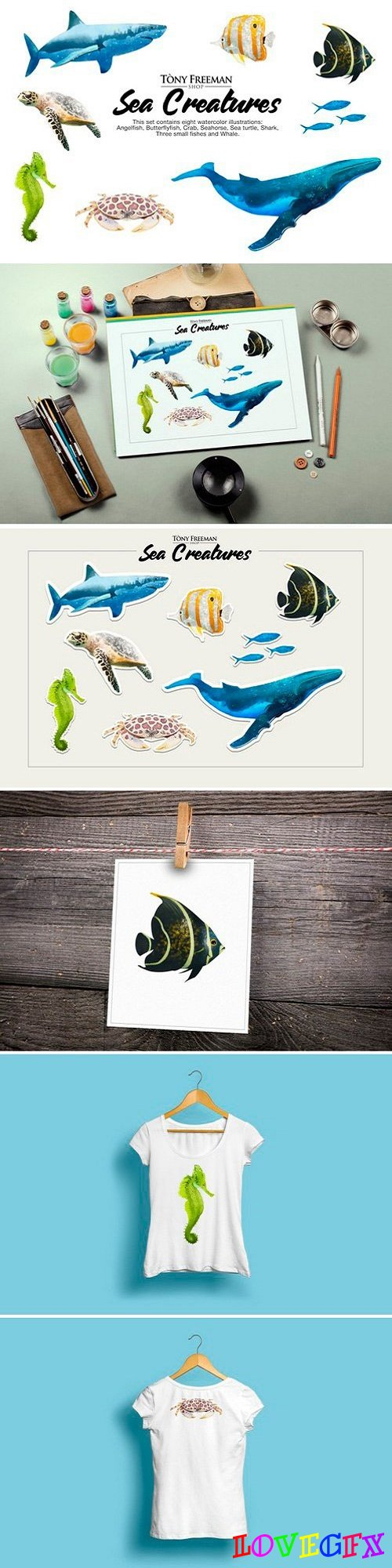 Set of Sea Creatures 2513383