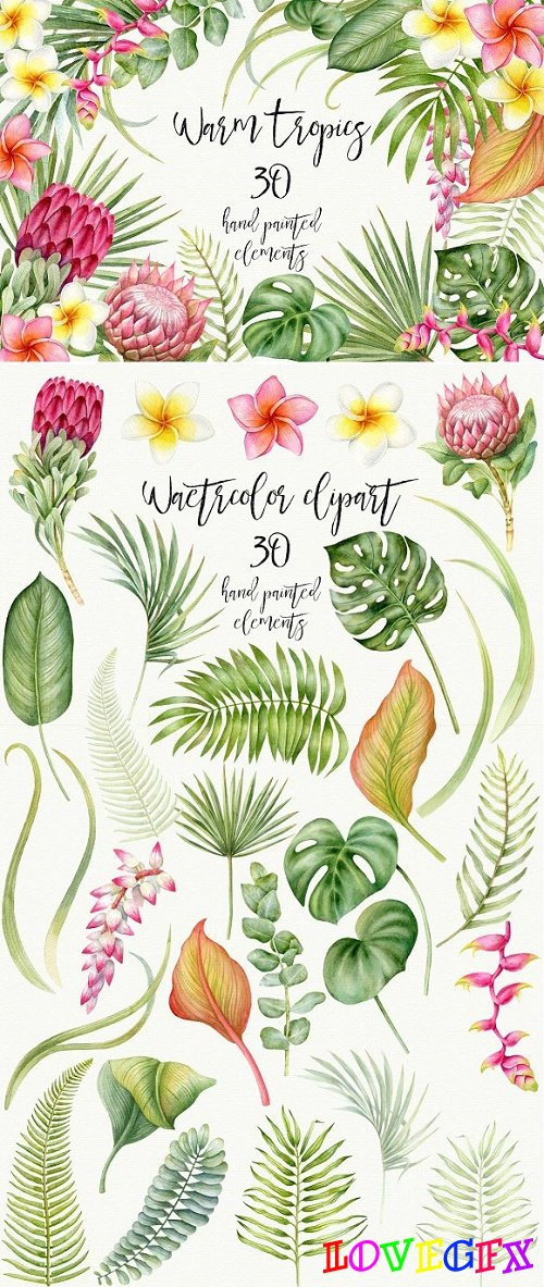 Watercolor tropical plants - 2273570