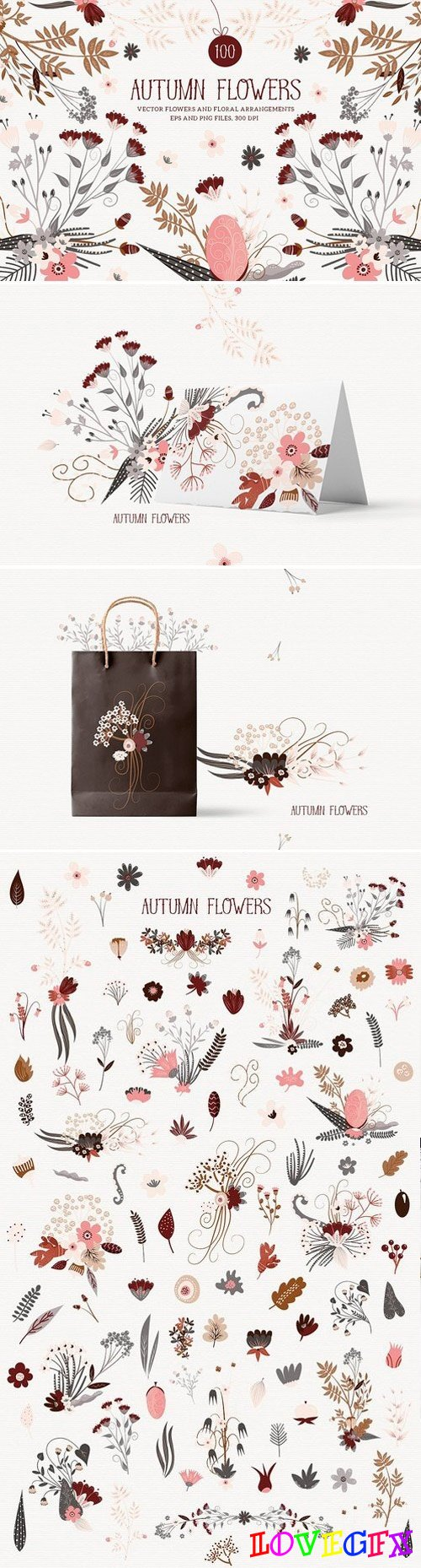 Autumn Flowers 1793046