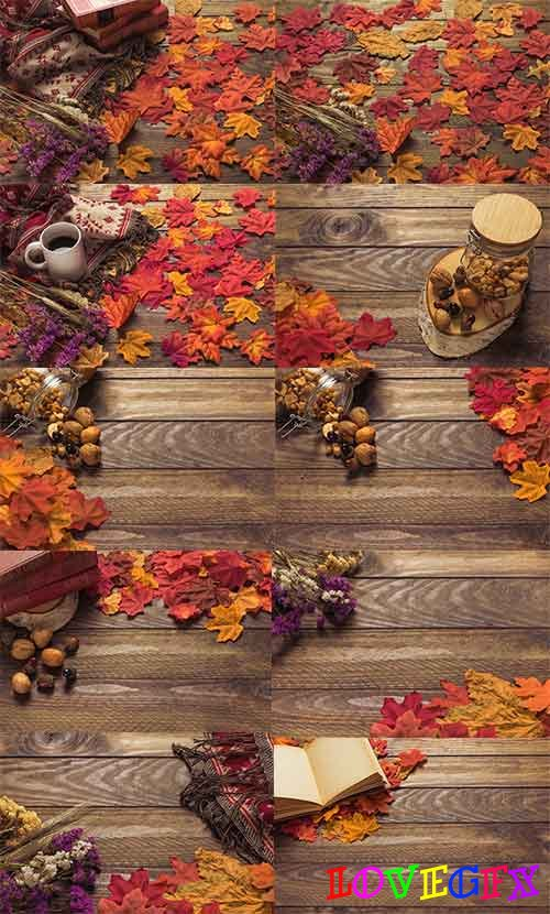 Autumn colors - 4 - Raster clipart
