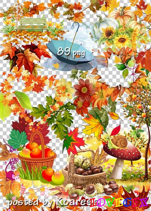 Clipart on a transparent background - Autumn compositions, leaves, landscape elements