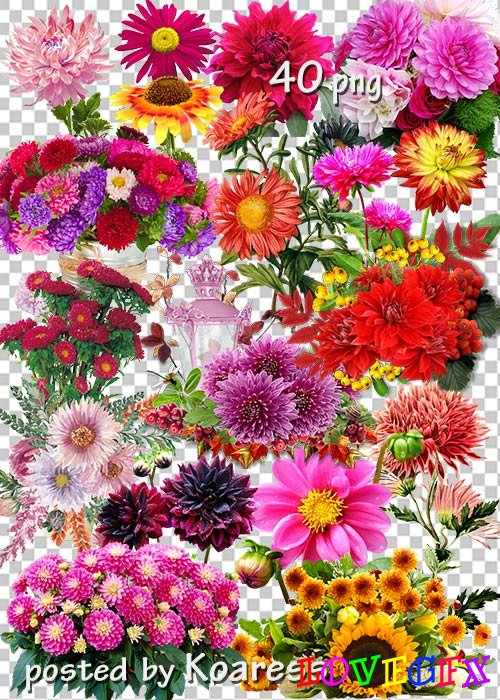 Transparent clipart png for design - Autumn compositions, flowers, bouquets