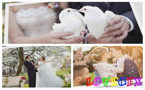 Project for Proshow Producer - Wedding Slideshow
