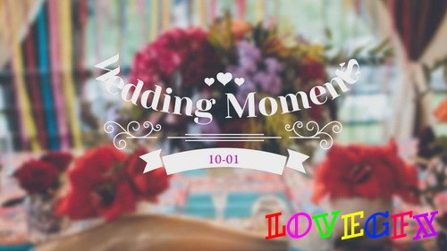 Project for Proshow Producer - Wedding Title 11