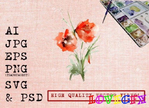 Red Poppies Watercolor