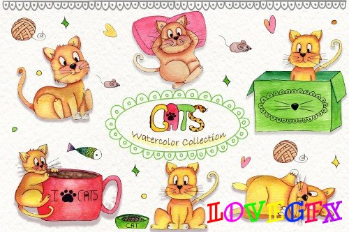 Lazy Cats Wattercolor Illustrations - 255034