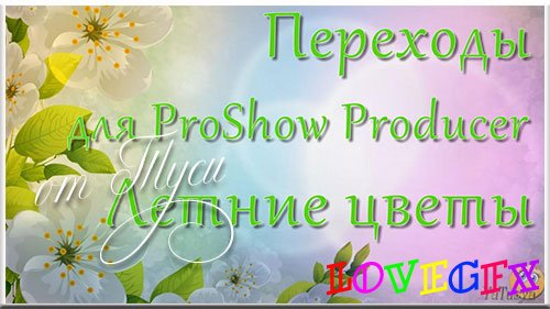 Transitions for ProShow Producer - Summer Flowers