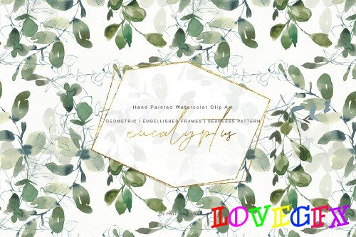 Watercolor Eucalyptus Clipart Set - 3863524