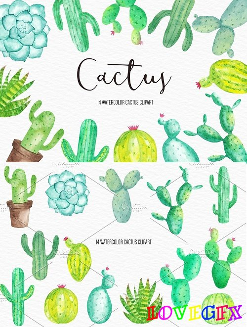 Watercolor Cactus Illustration - 4265534