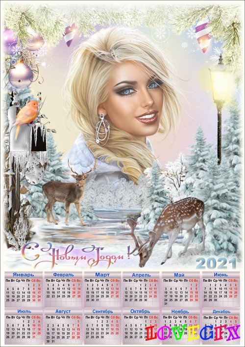 New year's calendar for 2021 with photo frame - Sparkling frost